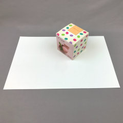 "DIGIPOP 4"" Cube Box"